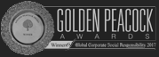 Global award icon